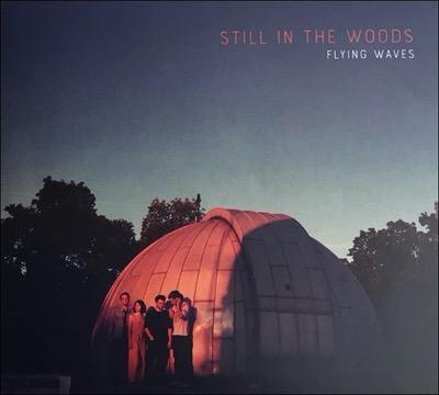 Flying Waves Album von Still in the Woods
